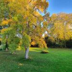 Parc Domaine de Penthièvre